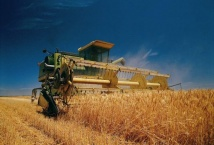 Перспективи отримання високого врожаю озимих зернових в Україні є цілком реальними - НААН