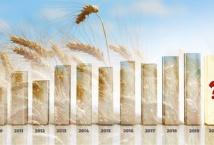 Урожай-2020: декілька кліків - і ви в курсі останніх подій
