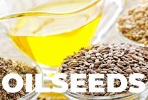 Прогнозы производства масличных в Украине базируются на снижении их урожайности – АПК-Информ