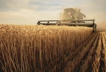 Ход полевых работ в Украине по состоянию на 9 апреля 2020 года