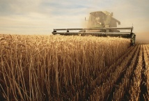 Ход полевых работ в РФ на 16 апреля 2020 года