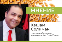 Египетский зерновой рынок будет продолжать динамично расти и развиваться – United Grain (АПК-Информ: ИТОГИ №5 (83))