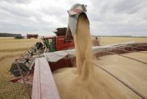 Сельскохозяйственный прогноз ОЭСР-ФАО раскрывает тенденции в области производства, потребления, торговли и цен на ближайшее десятилетие