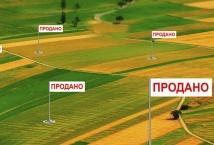 Держгеокадастр підбив підсумки 100 днів після відкриття ринку земель в Україні