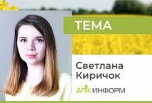 Украинский рынок рапса: высокий мировой спрос формирует новые торговые потоки