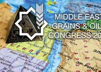 Египет останется крупнейшим импортером пшеницы в мире и в 2018/19 МГ