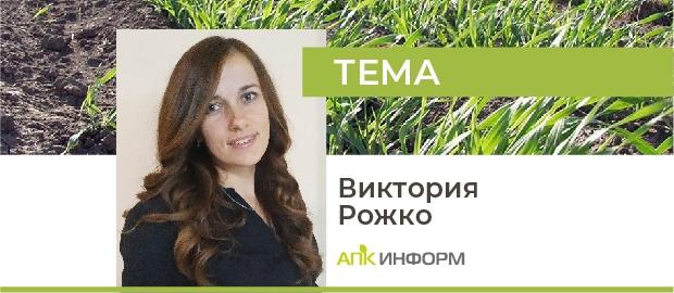 Россия: прогнозы ярового сева зерновых культур в условиях неизвестности