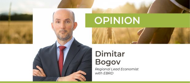 Ukraine before, during and after COVID-19: key changes in economy and prospects – Dimitar Bogov