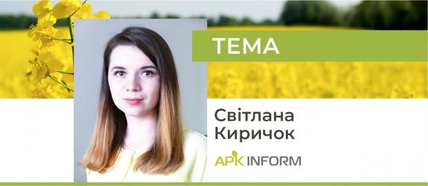 Український ринок ріпаку: високий світовий попит формує нові торгові потоки
